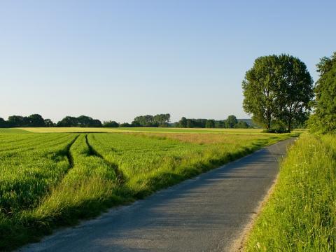Оценка для оспаривания кадастровой стоимости земельного участка